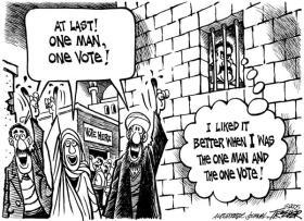 1 man 1 vote